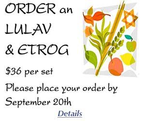 5779_lulav and estrog